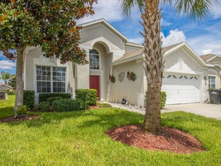 Sun Palm Home #2238WP