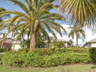 BALD EAGLE DR. 400 MARCO ISLAND VACATION RENTAL