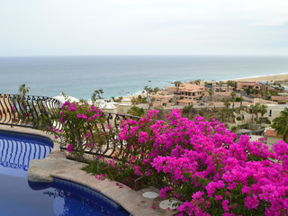 Villa Las Flores- 7 Bedrooms