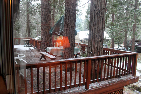 Cabin #6 Squirrel's Nest Vacation Rental in Yosemite - RedAwning